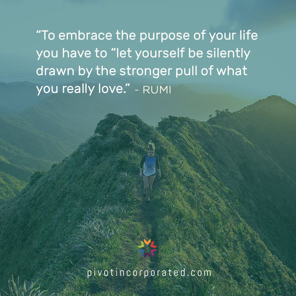 Embrace the purpose of your life - Pivot Seed Quotes