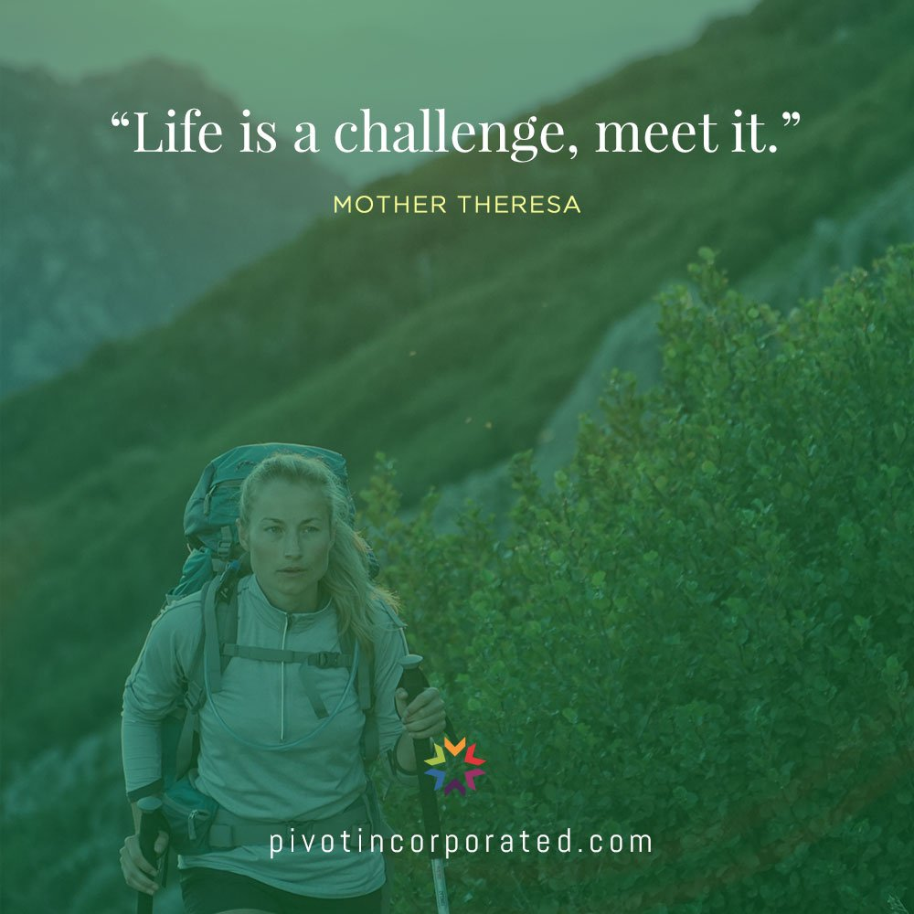 life is a challenge, meet it