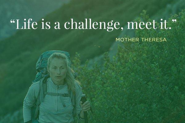 life is a challenge, meet it