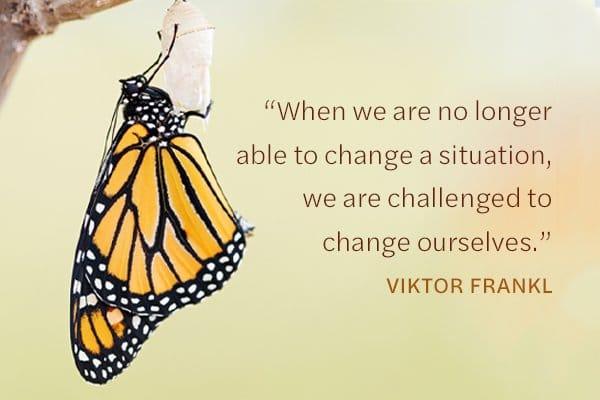 Meditation Moment about change with Viktor Frankl