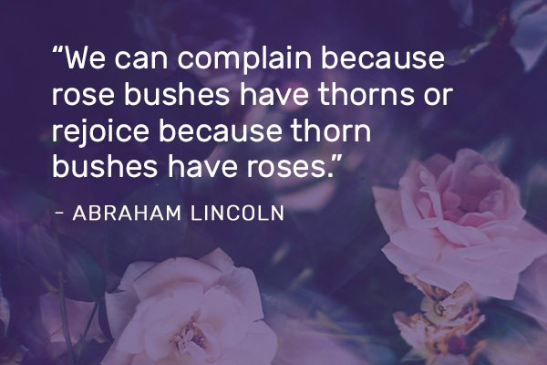 Pivot Seed Quote by Abraham Lincoln Featured