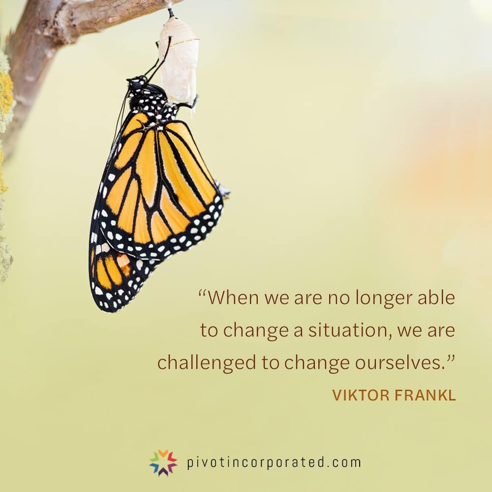 Meditation Moment about change with Viktor Frankl