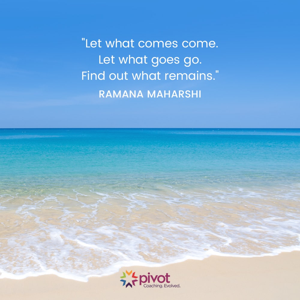 Meditation Moment From Ramana Maharshi
